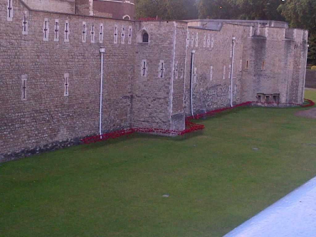 Ceramic poppies at the Tower of London - art installation by Paul Cummins to mark start of the First World War