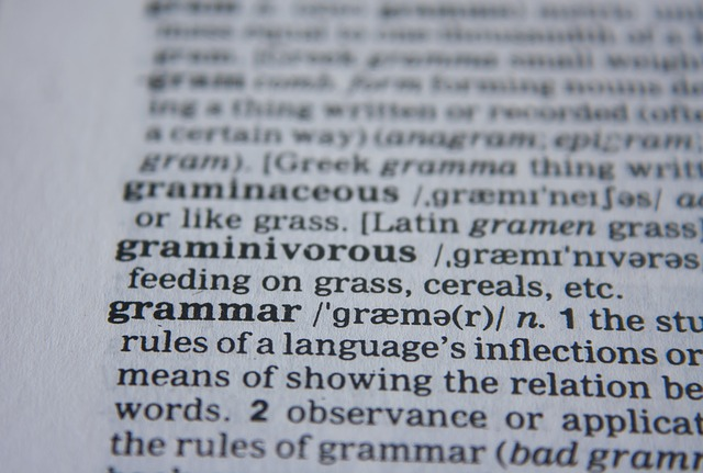 Grammar page from a dictionary