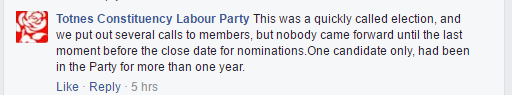 Totnes Labour Party on by election defeat