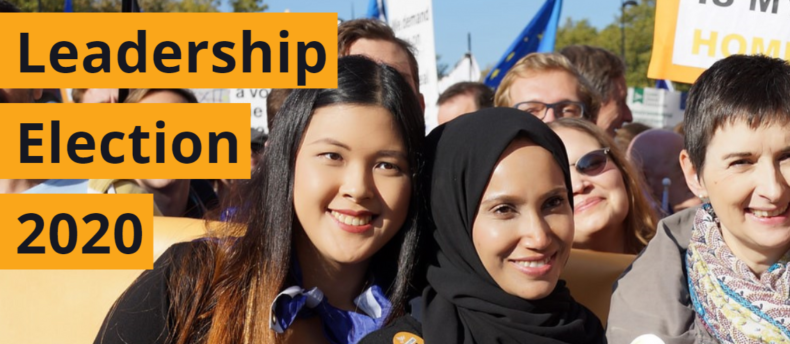 Liberal Democrat Leadership Election - banner showing party members